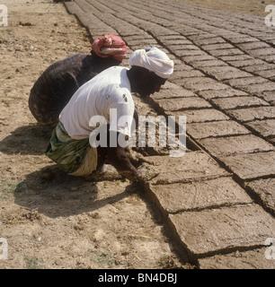 Making mud bricks in the Hadramaut Yemen - Stock Image