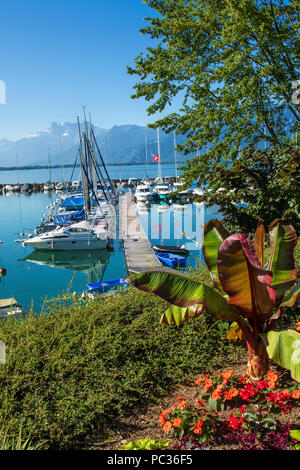 the town of Vevey on Geneva lake - Stock Image