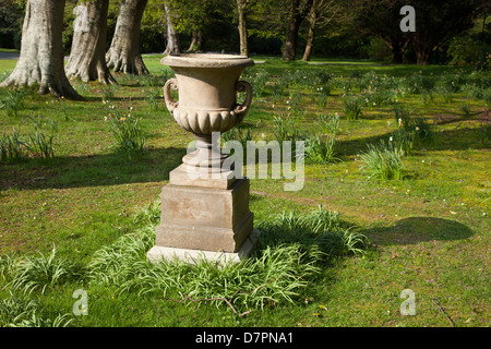 Garden ornament, stoneware urn on plinth. Beech trees, lawn, spring bulbs in background. At Milntown, period house - Stock Image