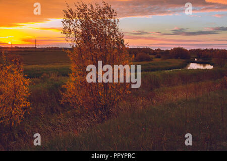 The sun rises above the river overgrown with shrub and small forest which is reflected on the river bed - Stock Image