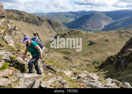 Walker Climbing up towards Dove Crag with Dovedale and the Eastern Fells Behind, Lake District, Cumbria, UK - Stock Image