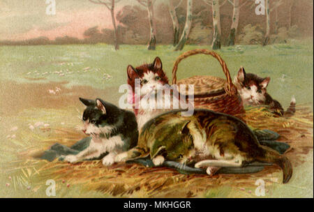 Cats and Picnic Basket - Stock Image
