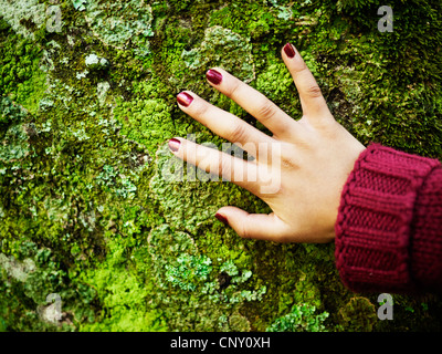 Girl places hand on lichen covered tree-trunk. - Stock Image