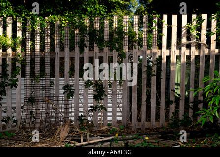 suburban picket fence - Stock Image