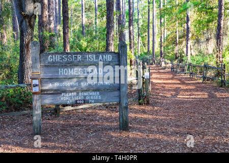 Okefenokee Swamp, Folkston, GA, USA-3/29/19:  A sign marking trail to the Chesser Island Homestead. - Stock Image