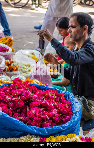 Indian flower vendor weighing flowers using a hand-held scale, Old Delhi, Delhi, India - Stock Image