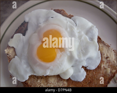 Double-yolked poached egg on toast - Stock Image