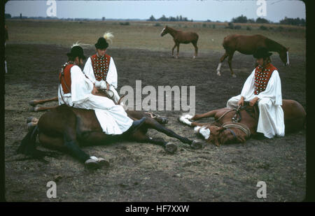 Horsemen of the Puszta in traditional dress performing equestrian arts traditional to the horse culture of the Hungarian - Stock Image