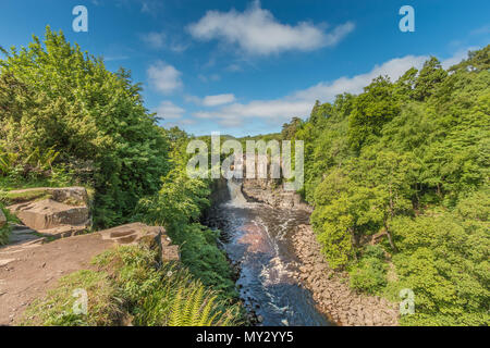 High Force Waterfall, Teesdale, North Pennines AONB, UK as seen from the Pennine Way long distance footpath in early summer sunshine - Stock Image