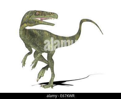 Dinosaurier Juravenator / dinosaur Juravenator - Stock Image