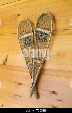 Decorative maple wood and rawhide pair of snowshoes on pinewood wall in basement inside a piece sur piece Eastern white pine log and timber home - Stock Image