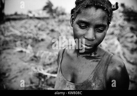 Floods in Mozambique March 2000; The crops of this young farmer's wife  in Matace, near Mombane on the Save - Stock Image