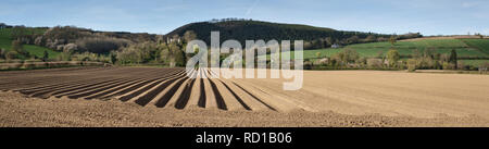 Near Presteigne, Powys, UK. A newly ploughed field in spring, with the ruin of Stapleton Castle in the background - Stock Image