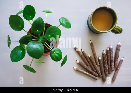 Pilea Plant, Coffee Mug, and Colored Pencils on Grey Table - Stock Image