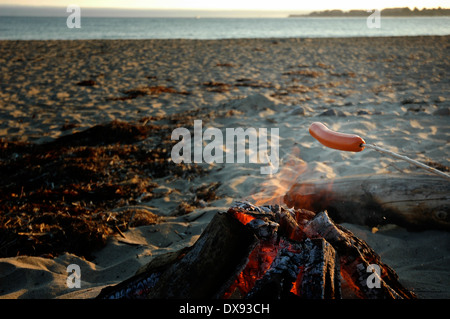 Hot dog roasting over campfire on the beach - Stock Image