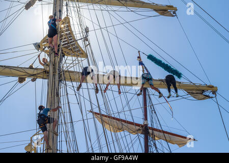Crew of the 'Fryderyk Chopin' brig from Poland preparing to sail on the yardarms in the morning light at - Stock Image