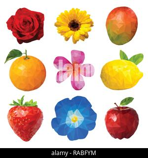 A polygon vector illustration of Fruits and Flowers - Stock Image