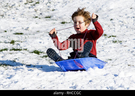 Chippenham, Wiltshire, UK. 2nd February, 2019. A boy enjoying the snow before it thaws is pictured in a local park in Chippenham as he speeds down a hill on a sledge. Credit: Lynchpics/Alamy Live News - Stock Image