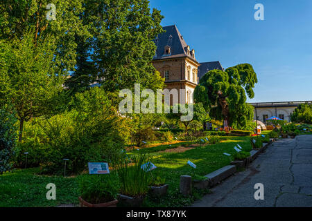 Italy Piedmont Turin Valentino botanical garden - View with Valentino castle - Stock Image