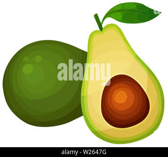 avocado fruit green nutrition natural organic illustration cut - Stock Image