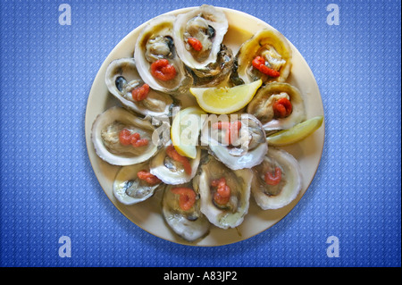 A dozen raw oysters on the half shell - Stock Image