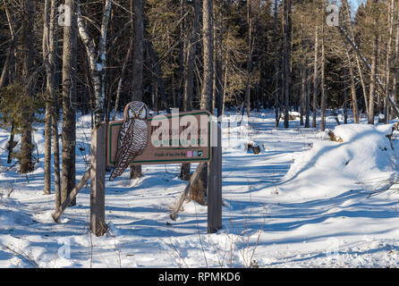 Sign for the Warren Nelson Memorial Bog at the Sax-Zim Bog, a natural bog and forest in northern Minnesota. Duluth, Minnesota, USA. - Stock Image