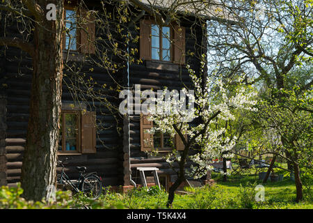 Wooden house at Russischen Kolonie ( Russian Colony) Alexandrowka, in spring at Potsdam, Brandenburg, Germany - Stock Image