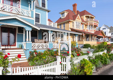 Colorfully painted Victorian houses, including the Oak House, serve as B&Bs on Seaview Avenue in Oak Bluffs Massachusetts on Martha's Vineyard. - Stock Image