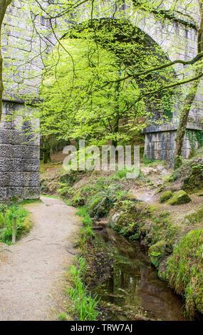 Treffry Viaduct in the Luxulyan Valley, Cornwall, England, UK - Stock Image
