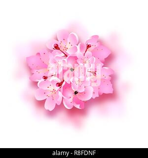 Decorative sakura flowers, bouquet, design elements with shadow. Can be used for cards, invitations, posters. illustration - Stock Image