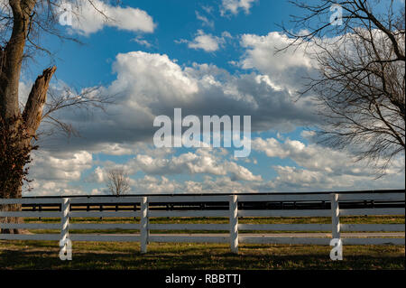 Landscape with clouds and white board fence framed between trees - Stock Image