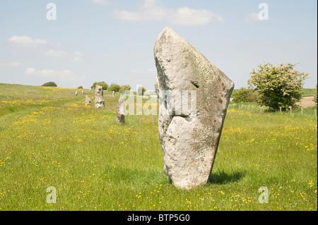 Avebury Stone Circle, Dorset, UK. - Stock Image