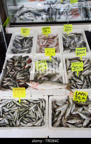 Fresh fish stall at the indoor market, Marmaris, Mugla province, Turkey - Stock Image