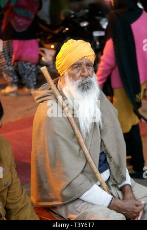 Senior Sikh man with a long flowing white beard wearing a blue turban and glasses, a devotee at the Golden Temple of Amritsar, Amritsar, Punjab, India - Stock Image
