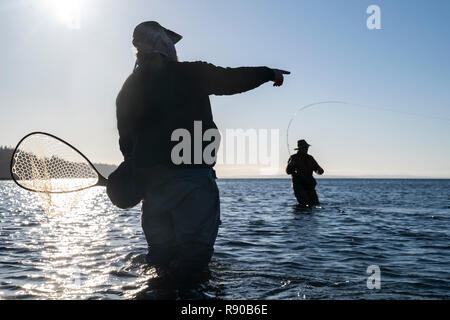 A guide advises his client while fly fishing in salt water for searun coastal cutthroat trout and salmon in northwest Washington State, USA - Stock Image