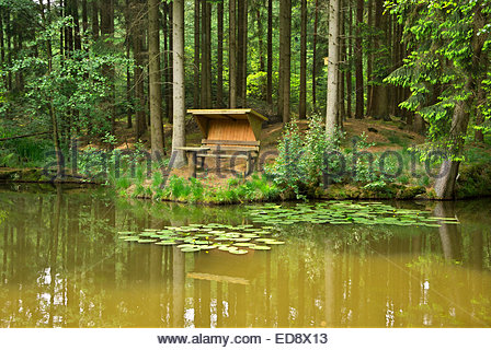 A covered bench with table by a peaceful pond with water lilies, by a forest in Lower Saxony, northern Germany. - Stock Image