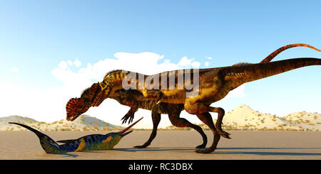 A Eurohinosaurus marine reptile lays helpless on the tidal flats as the sea goes out as two Dilophosaurus theropod dinosaurs look at him as their next - Stock Image