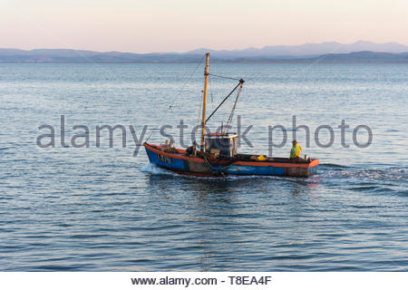 Morecambe, Lancashire, UK, 13 May 2019, UK Weather. One of the last shrimpers operating out of Morecambe heads out to the shrimping grounds with the Lake District hills visible across the bay. After a cold night, unbroken sunshine is forecast  for the start of the working week and temperatures in the low 70s Fahrenheit may be reached in North West England by the middle of the week. Credit: Keith Douglas News/Alamy Live News - Stock Image