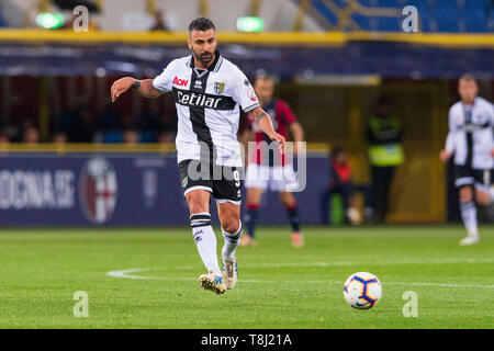 Bologna, Italy. 13th May, 2019. Fabio Ceravolo (Parma) during the Italian 'Serie A' match between Bologna 4-1 Parma at Renato Dall Ara Stadium on May 13, 2019 in Bologna, Italy. Credit: Aflo Co. Ltd./Alamy Live News - Stock Image