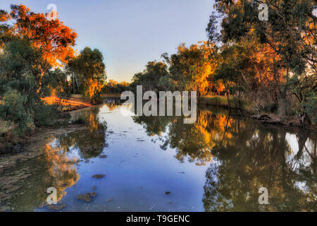 Gwydir river flowing through Moree town surrounded by leave trees at sunrise in warm rising sun light. - Stock Image