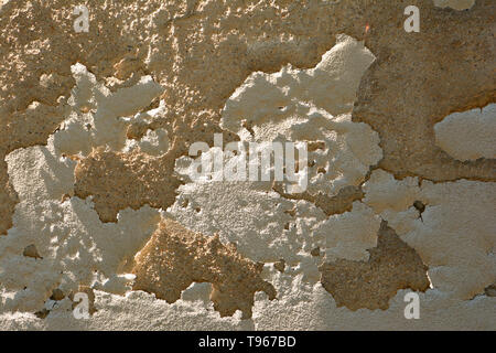 dirty and old cracked damaged plaster wall background lit by the midday sun, rough damaged plaster wall - Stock Image