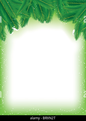 Pine Branches Background - Stock Image