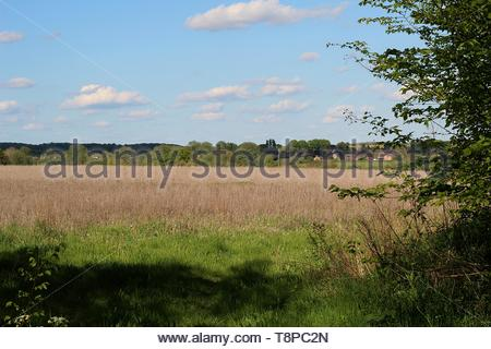 A village in the distance, looking across the fields on a spring day in East Anglia - Stock Image