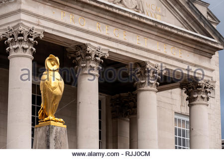 Leeds Golden Owl by the Civic Hall Leeds West Yorkshire England - Stock Image
