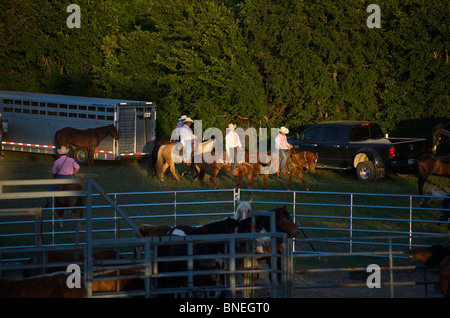 Cowboy members of PRCA riding horses backstage at rodeo event in Bridgeport, Texas, USA - Stock Image