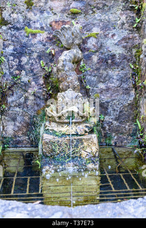 A carved stone fish water feature in a formal garden. - Stock Image