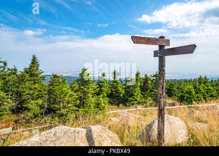 Wooden sign showing different directions on the top of a hill with pine trees - Stock Image