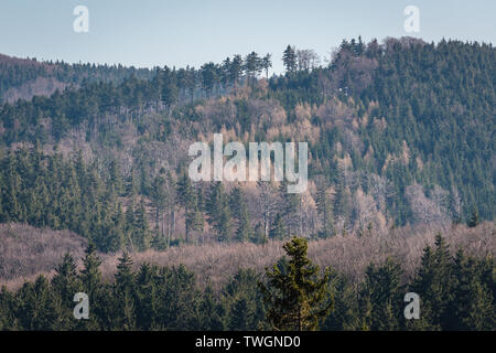 Forests in Landscape Park of Gory Sowie (Owl Mountains) mountain range in Central Sudetes, Poland - Stock Image