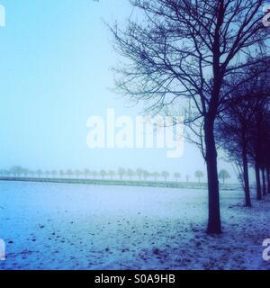 Snowy scene - Stock Image