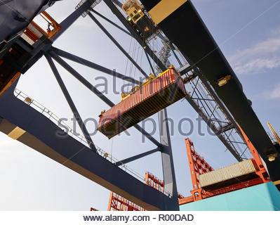 Crane lowering cargo container - Stock Image